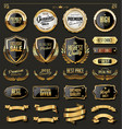 luxury gold and black design elements collection vector image vector image