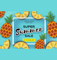 pineappple top view ananas super summer sale vector image