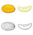 set sketch and cartoon melons vector image vector image