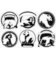 labels emblems with wild bear vector image