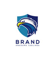 eagle head with shield logo template vector image