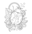 Ladybug coloring book vector image vector image