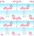 Pink Flamingo Seamless Horizontal Stripes Pattern vector image vector image