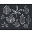set hand drawn tree leaves - white on vector image