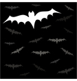 Bats night vector image