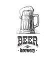 beer mug filled with beer vintage vector image vector image