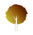 tree trunk bush nature forest icon vector image vector image