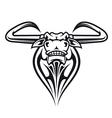 Wild buffalo bull head vector image vector image