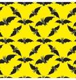 funny bat on black background vector image vector image