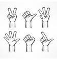 gestures of human hands vector image