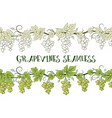 grape seamless ornament vector image vector image