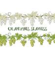 grape seamless ornament vector image