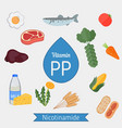 vitamin pp or nicotinamide infographic vitamin pp vector image
