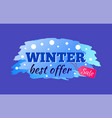 winter sale best offer label vector image