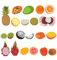 Tropic fruit isolated set Flat style set of vector image