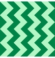 Abstract pattern with green zigzag vector image