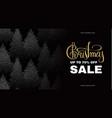 christmas sale elegant design template vector image vector image