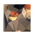 Cool Black Blue Brown Abstract Low Polygon vector image vector image
