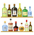 different alcoholic drinks in bottles alcohol vector image vector image