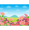 Floral Field background Background vector image vector image