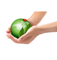 Green world and leaf have love bug in woman hands vector image