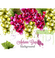 red and white grapes autumnal watercolor card vector image