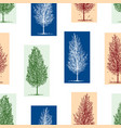 seamless background silhouettes birch trees vector image