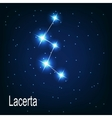 The constellation Lacerta star in the night sky vector image
