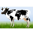 World cow vector image vector image