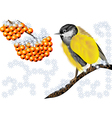 bird and winter berries vector image