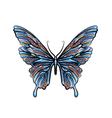 ethnic butterfly vector image