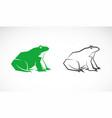green frog design on white background amphibian vector image vector image
