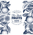 orange fruit design template hand drawn vector image vector image