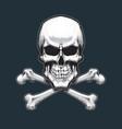 pirates skull and bones vector image vector image