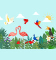 tropical birds in exotic nature with palm vector image vector image