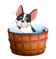 A dog taking a bath vector image
