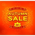 Autumn sale fall discount and shopping vector image vector image