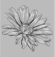 grey flower 3 vector image vector image