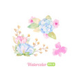 set of watercolor floral elements for decoration vector image vector image