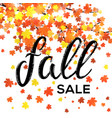 fall sale design seasonal discount autumn poster vector image