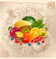 fruit and berries round design vector image vector image