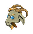 hip goat smoking cigar drawing vector image vector image