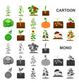 plant vegetable cartoon icons in set collection vector image vector image