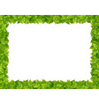 square frame from fresh green leaves vector image