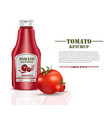 tomato ketchup sauce product mock up isolated on vector image