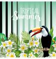 Toucan Bird Background Retro Pattern Tropical vector image vector image
