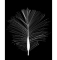 White Bird Feather Drawn on Black Background vector image