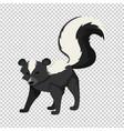 cute skunk on transparent background vector image