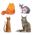 Cat Breeds set vector image
