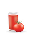tomato juice with whole tomato vector image